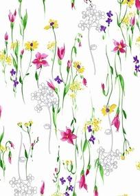花朵插画—盛开的五彩缤纷的花朵
