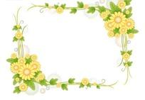 绿色藤蔓的小黄菊花朵方形边框
