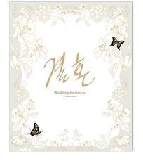 花纹和蝴蝶矢量背景