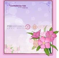 粉色背景上的粉色边框和邦联玫瑰插画