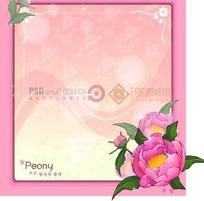 粉色背景上的粉色边框和粉色牡丹花插画