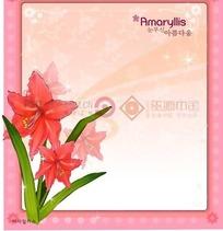粉色背景上的粉色边框和孤挺花插画