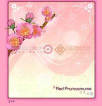 粉色背景上的粉色边框和红梅花插画