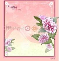 粉色背景上的粉色边框和娇琴纱插画