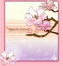 粉色背景上的粉色边框和木兰花插画