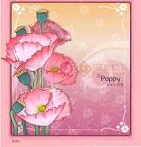 粉色背景上的粉色边框和罂粟插画