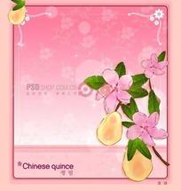 粉色背景上的粉色边框和中国木瓜和木瓜花插画