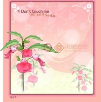 红色背景上的粉色边框和别碰我花插画