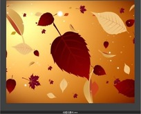 漂浮的一片红色树叶