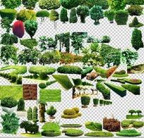 园林景观灌木绿篱ps素材大全