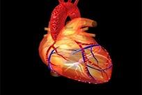 心脏搏动片头视频