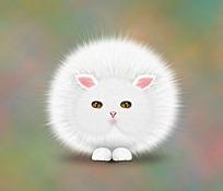 白色可爱猫咪