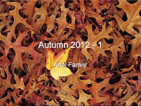 秋天的落叶PPT模板
