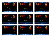 秋季枫叶飘落动画视频