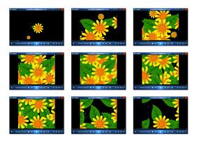 花朵绿叶背景视频