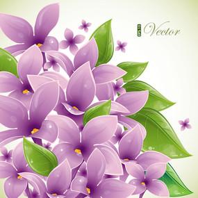 矢量紫色花朵绿叶背景素材