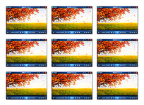 黄色树叶飞舞视频