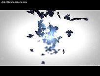 光效枫叶飘散视频