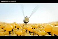 卡通立体小蜜蜂视频