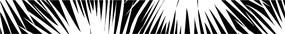 黑白矢量图
