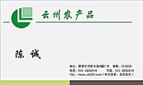 云州农产品名片排版设计