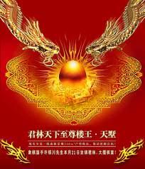 雙龍戲珠君臨天下經典傳統龍紋圖案