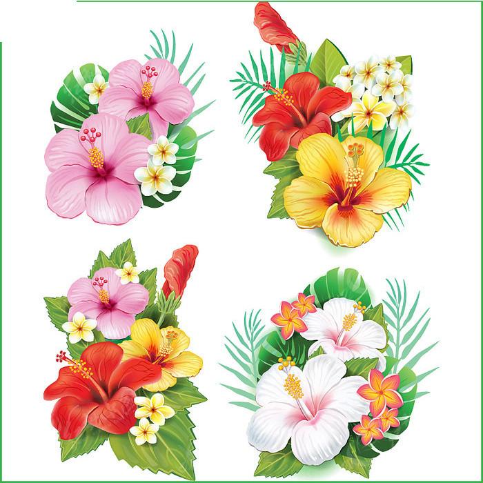 矢量花卉图案图片